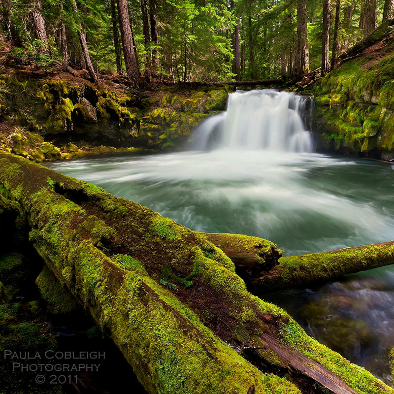 Waterfall - Whitehorse Falls II by La-Vita-a-Bella