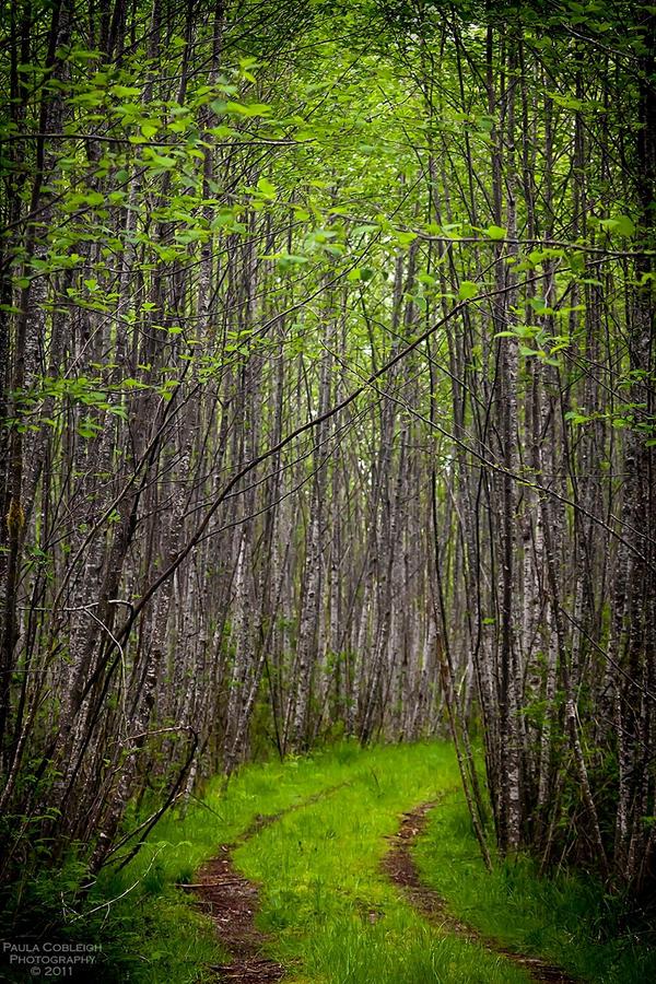 All roads lead to... by La-Vita-a-Bella