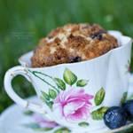 Fancy a muffin?