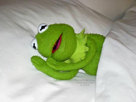 Sleepy Kermit