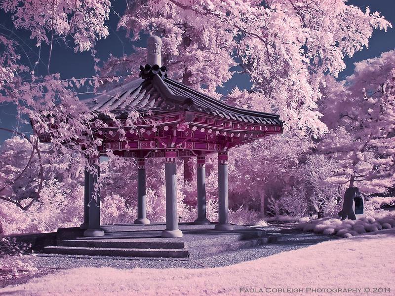 Infrared Korean Pavilion by La-Vita-a-Bella