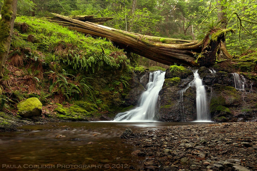 Waterfall - Rustic Falls revisited by La-Vita-a-Bella