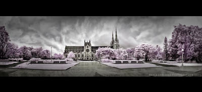 Infrared - St Mary's Cathedral