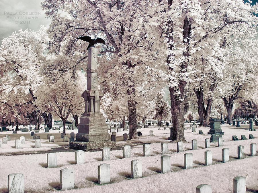 Infrared Cemetery II by La-Vita-a-Bella