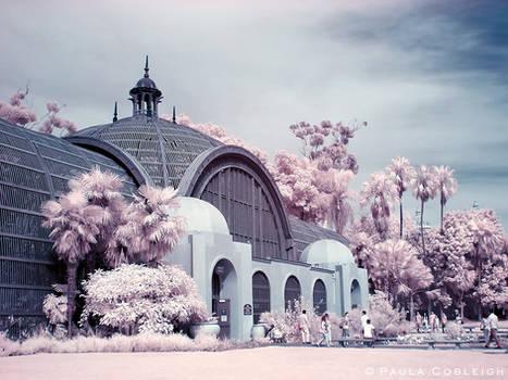 Infrared Botanical Garden