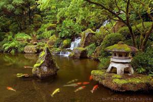 Zen Garden by La-Vita-a-Bella
