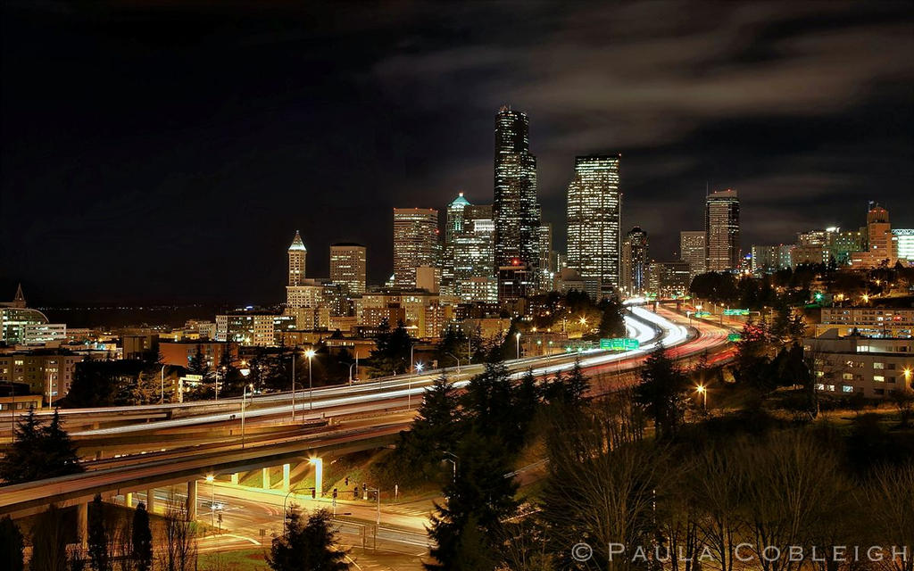 Seattle Skyline by La-Vita-a-Bella