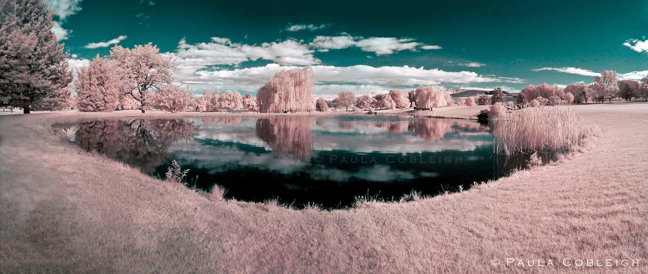 The 19th Hole  - in Infrared by La-Vita-a-Bella