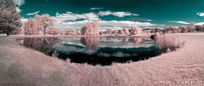 The 19th Hole  - in Infrared