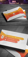 Sek   Business Card by khaledzz9