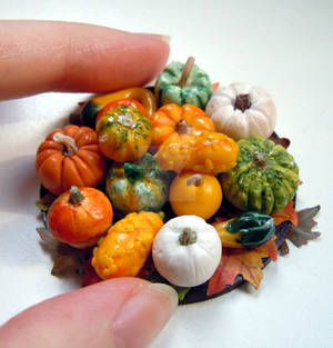 Miniature autumn ensemble of pumpkins and squashes