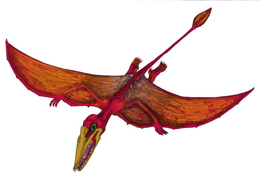 Rhamphorhynchus 2 by TheKKM