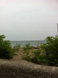 peeking the beach