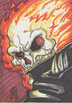 GHOST RIDER PSC