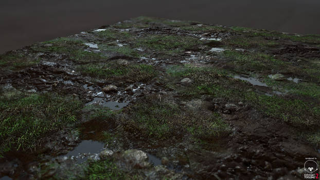 Organic Grass/Mud Texture