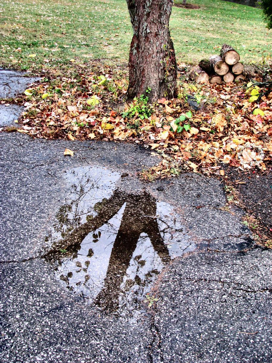 Seasonal Reflections by irish-eyes2