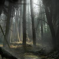 Mist forest by daRoz