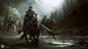 Knights Division