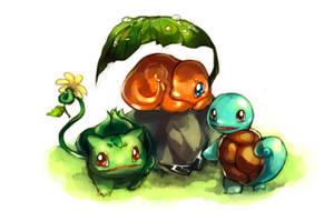 Pokemon : First meet by Sa-Dui