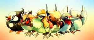 Pokemon : Common birds