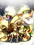 Pokemon : SoulSilver team