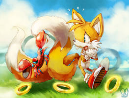 Sonic the Hedgehog : Don't hurt my Tails! by Sa-Dui