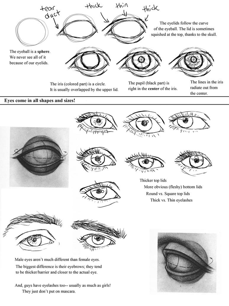 worksheet How To Draw Worksheets drawing eyes worksheet by ccrask on deviantart ccrask