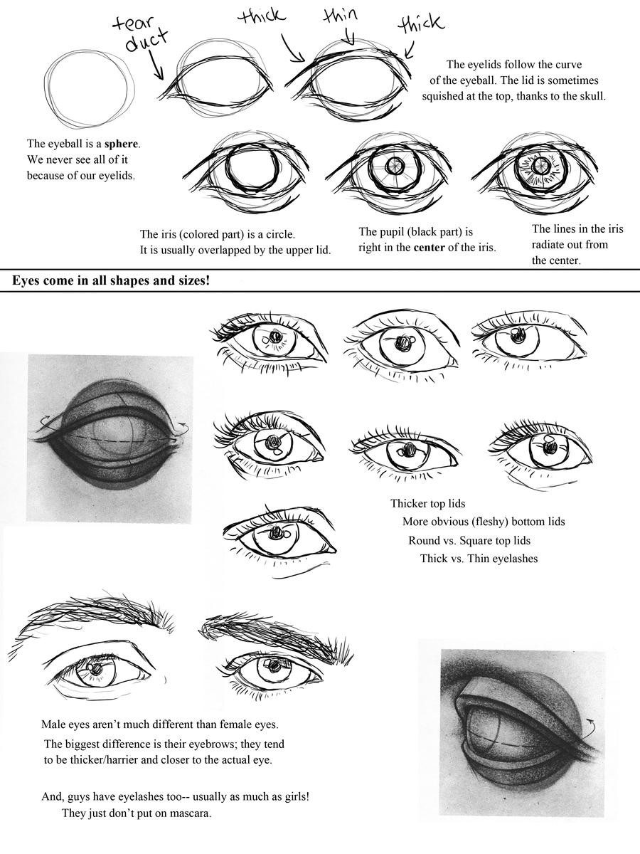Drawing Eyes Worksheet by ccRask on DeviantArt – How to Draw Worksheets