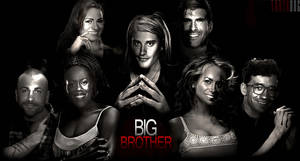BIG BROTHER 14 POSTER