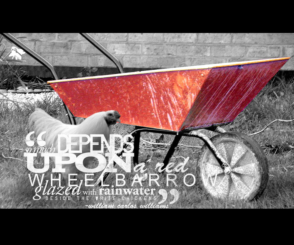 the red wheelbarrow The all-american backdrop of the wheelbarrow's oh-so-heroic actions are reinforced by the poem's colors — the red of the wheelbarrow, the white of the chickens, the blue (it must be blue.