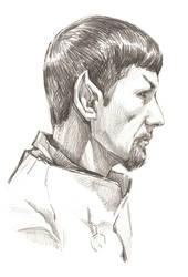 Spock Mirror by mashakukhar
