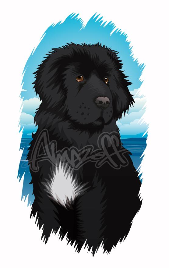 Newfoundland Dog by almazoff196