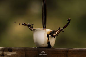 The cup II by Hassan-arts