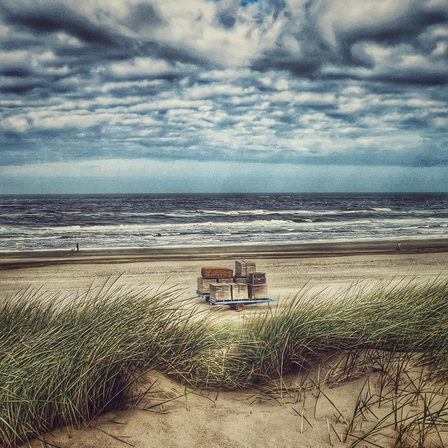 At the beach (5) by Rob1962