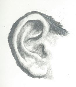 how to draw an ear step by step in pencil