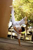 capoeira by homedoggieo