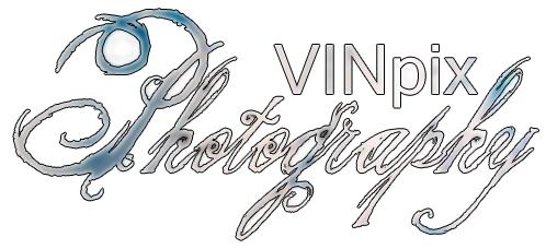 VINpix banner by VINpixPhotography