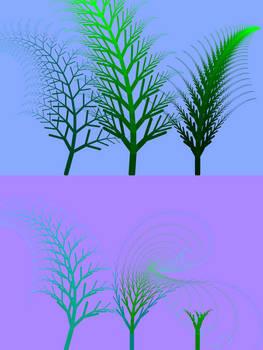 Ferns - Static view
