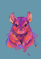 Colorful Chinchilla by 99g3ny99
