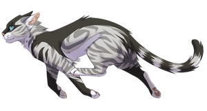 Crowfeather and Feathertail|Fusion