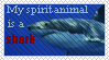 Shark Spirit, baby by Nacht-Vico