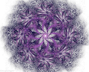 Flowers by FractalEuphoria