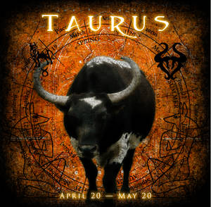 The Zodiac Project - Taurus by the-zodiac-club