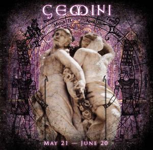 Zodiac Project - Gemini by the-zodiac-club