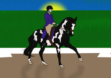 Fullbody Training for 027 Midnight Storm by Ride4Life-Stables