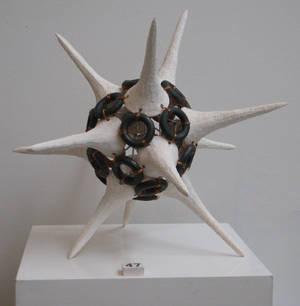 Radiolaria II
