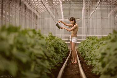 Gardener by ArtofdanPhotography
