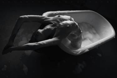 Dolphin by ArtofdanPhotography