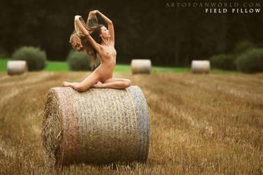 Field Pillow by ArtofdanPhotography