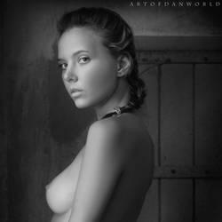 Beauty Of Sensuality by ArtofdanPhotography